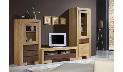 Comodă TV 2 sertare HAVANA 120/50/50 cm